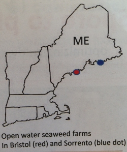 Seaweed Map