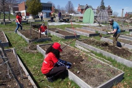 Community Garden Clean Up 1
